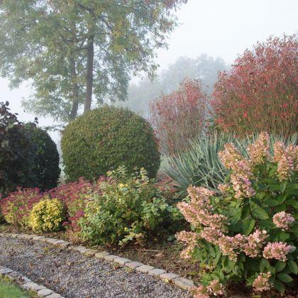 herfst in Villa Faro Durbuy